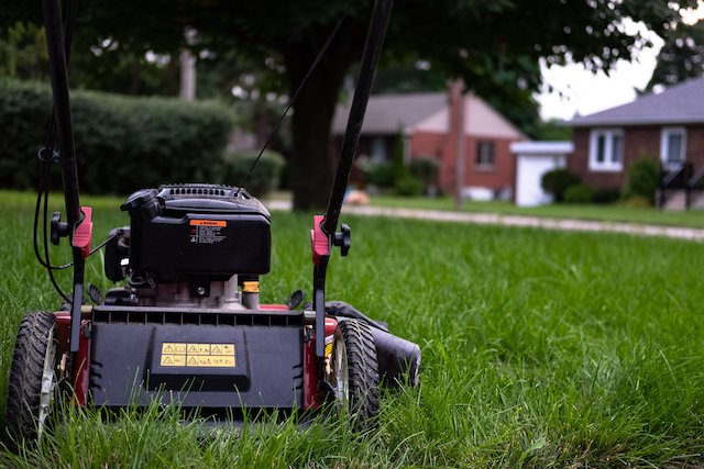 cut-grass-lawn-mower